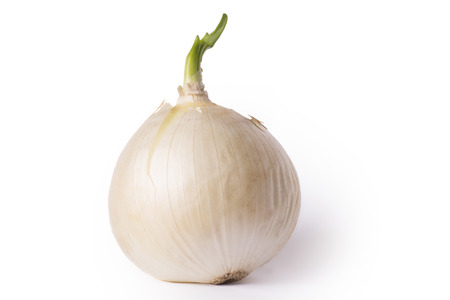 natural, fresh onion, onion with a green onion stalk. isolated on white background