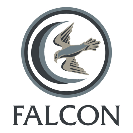 merlin falcon: Falcon and the moon on a white background. illustration.