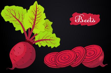 Rüben . Rüben mit einem Bündel Blätter . Stücke von Auberginen . Nützliches Gemüse . Vegetarismus . Vektor-Illustration mit dem schwarzen Hintergrund . Handzeichnung Hände Standard-Bild - 76042685