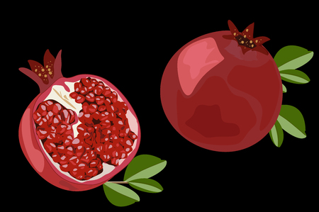 Pomegranate. Juicy ripe fruit in cross section. Color vector illustration. Black background. Иллюстрация