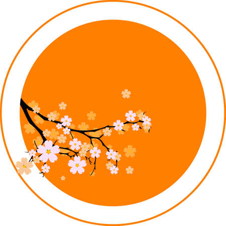 sakura flowers: Oriental cherry tree