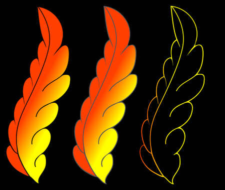 3 feathers on black surface Vector