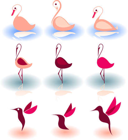 Vector illustration of birds - icon set number 8