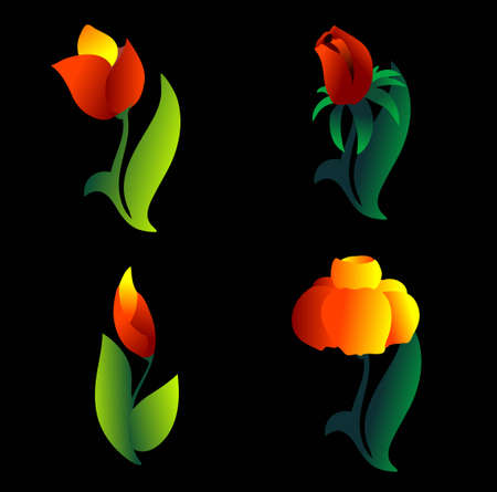 primavera: flowers