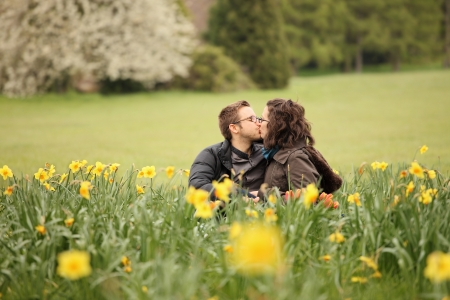 man kissing his girlfrieng in daffodils photo