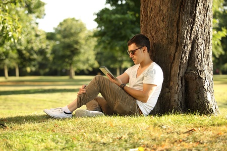 guy sitting beneath the tree using tablet