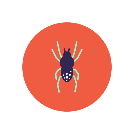spidery: stylish icon in color  circle spider insect