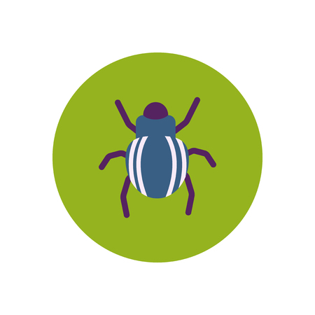 crawly: stylish icon in color  circle beetle insect