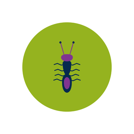 antennae: stylish icon in color  circle ant insect