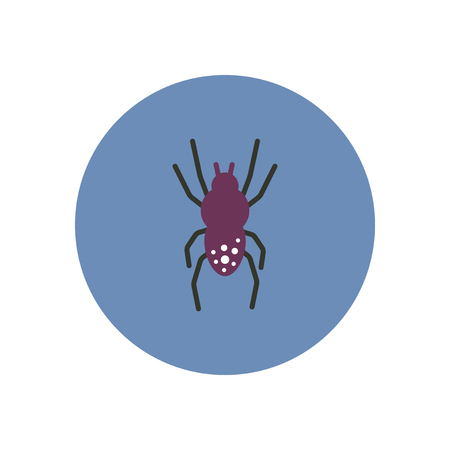 hairy legs: stylish icon in color  circle spider insect