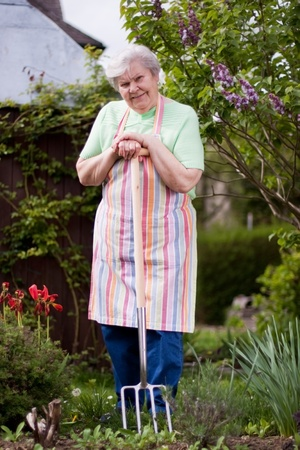 Pensioner in the garden with pitchfork photo