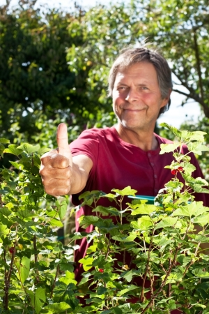 male Senior in garden lifts thumb up photo