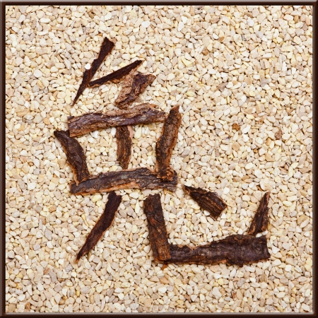 Chinese character rabbit of bark, stones background, signs of the zodiac photo