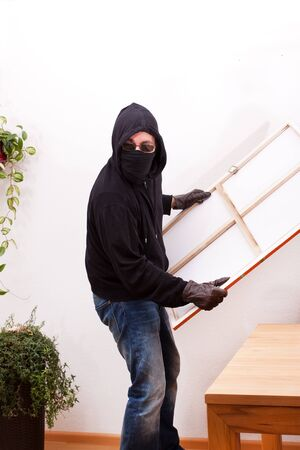 law breaker: burglar steals a painting