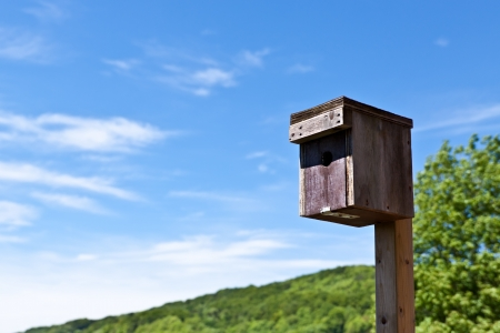 Nesting box in front of sunny background, closeup Stock Photo - 20222874