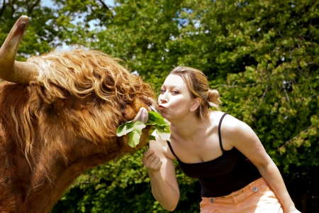 pretty young woman is kissing a highland cattle photo