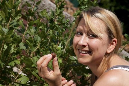 nibbles: Pretty blond woman nibbles gooseberrys
