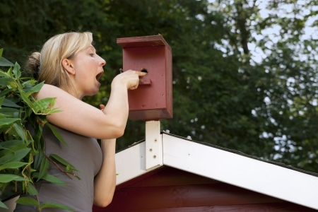 blond woman in garden controls bird house Stock Photo - 21622055