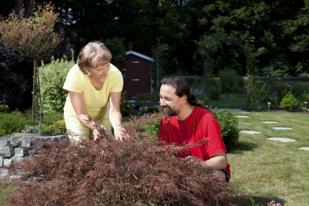 Woman and man are working in the garden photo