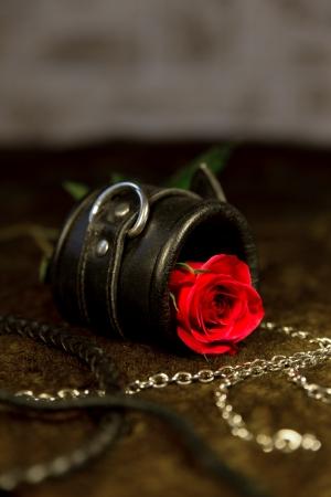 czerwona róża i zabawki bdsm