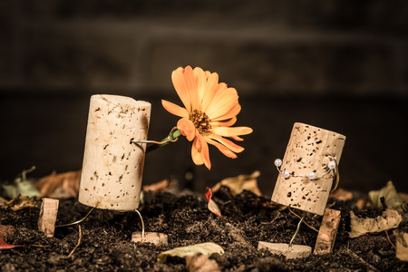humanly: Concept floral present to woman, wine cork figures Stock Photo