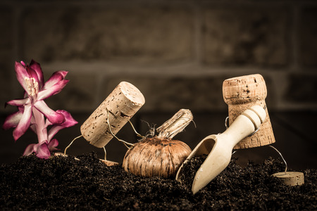 humanly: Concept Two farmer planting onions of wine cork figures