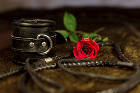 Whip, cuff and rose photo