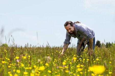wonderfull: a happy bearded man on a wonderfull flower meadow