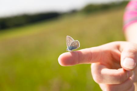donna farfalla: un dito femmina con una farfalla su di esso Archivio Fotografico