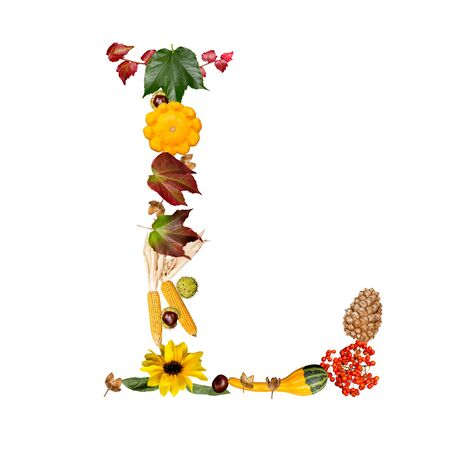 isolated Alphabet with autumn symbols Letter L photo