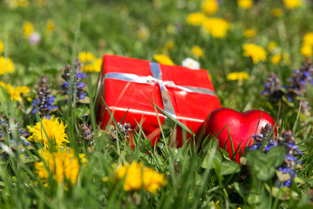 a red gift and heart in front of a spring meadow photo
