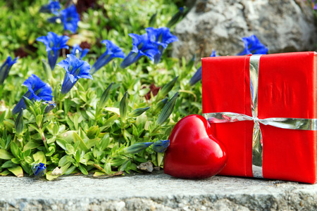 rock garden: beautiful greeting card with bavarian gentian and a heart and gift