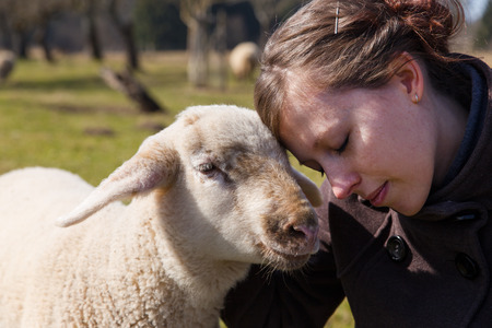 sanctuary: pretty young woman is leaning her head on sweet lamb
