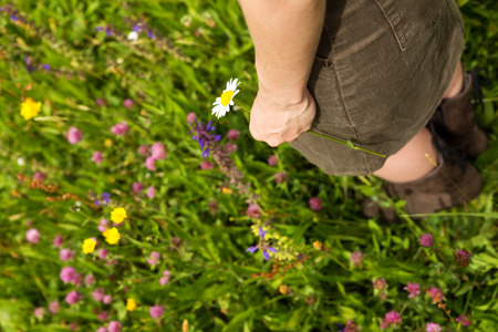 margarite: hand and feet close up in a flower meadow