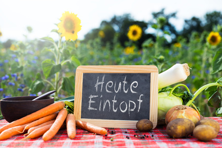 herbs white background: organic vegetables on a table, concept organic farming, agriculture and healthy lifestyle