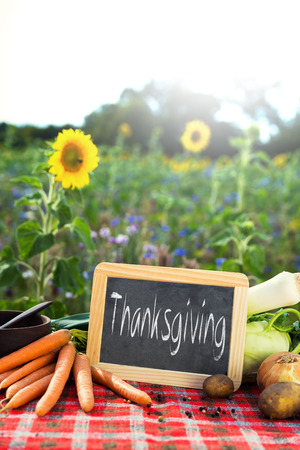 farm background: organic vegetables on a table, concept organic farming, agriculture and healthy lifestyle