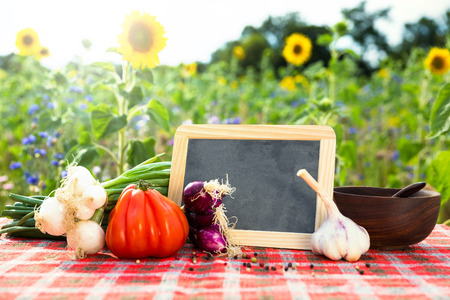 vegetable background: organic vegetables on a table, concept organic farming, agriculture and healthy lifestyle