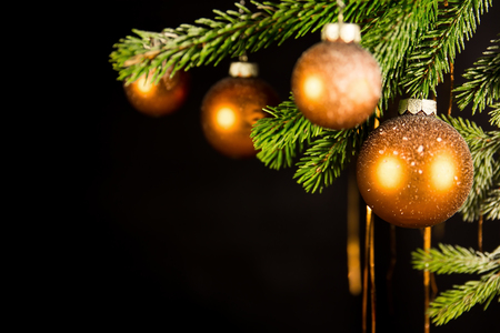 traditional christmas: black christmas background with fir branch and balls