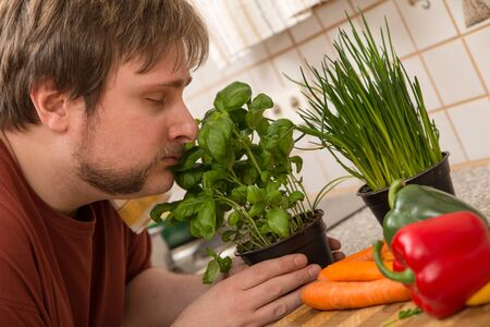 herbs: a young man is smelling on the basil Stock Photo