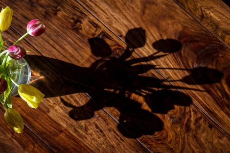 tulips in vase: Shadow from a bouquet of flowers on the table
