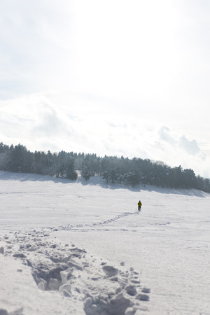 locomotion: snowshoe tracks and a man in the background