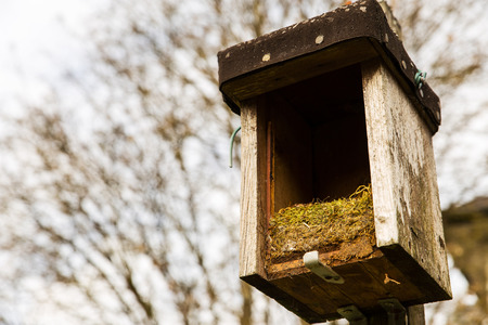 purge: opened birdhouse with old nest in it