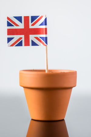 plant pot: plant pot with british flag, concept population increase or economic increase Stock Photo