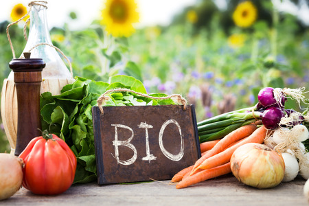 Bio-Gemüse auf einem Tisch, das Konzept des ökologischen Landbaus, der Landwirtschaft und gesunden Lebensstil