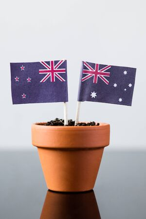 bilateral: flags of australia and new zealand in a plant pot
