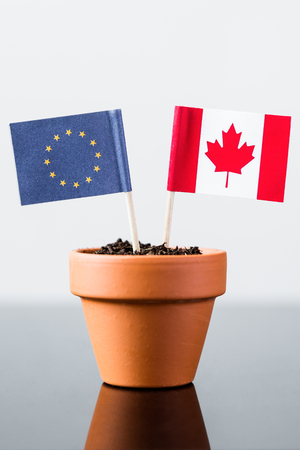 bilateral: flags of europe and canada in a plant pot, concept ceta Stock Photo