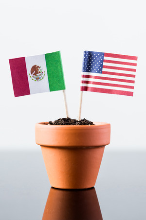 bilateral: flags of mexico and the united states in a plant pot Stock Photo