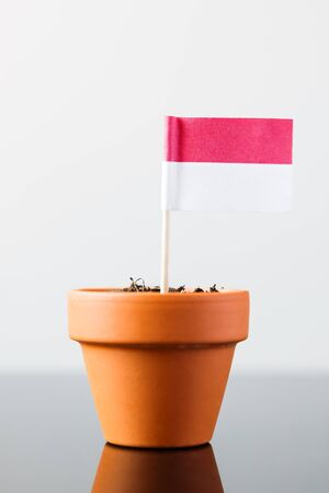 economy growth: flag of indonesia in a plant pot, concept economy growth