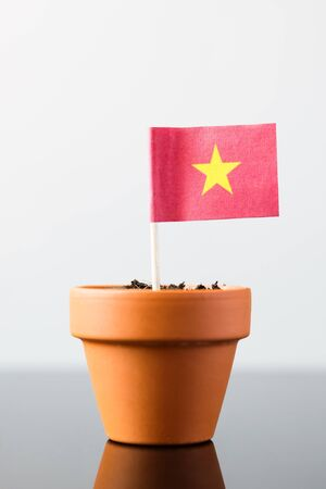 economy growth: flag of vietnam in a plant pot, concept economy growth Stock Photo