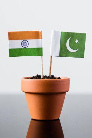 banco mundial: banderas de Pakist�n y la India en una maceta